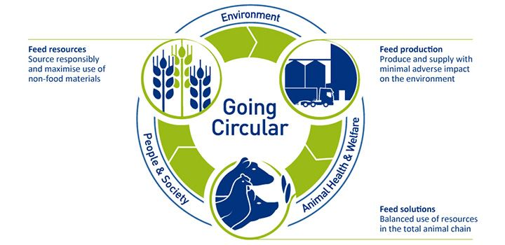 The three themes of Going Circular