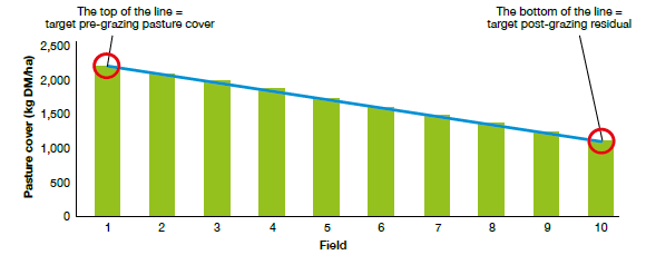 Feed wedge showing ideal amount of grass in each field in grazing rotation