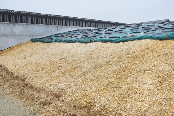 Afbeelding: Mixed Silage