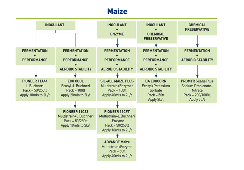 Maize inoculant selector