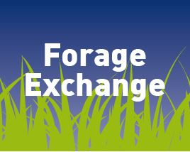 Afbeelding: Forage Exchange image-01