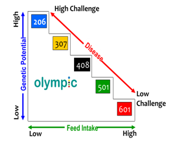 Afbeelding: OLympic disease challenge diagram