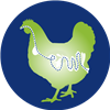 Afbeelding: chicken digestion health icon